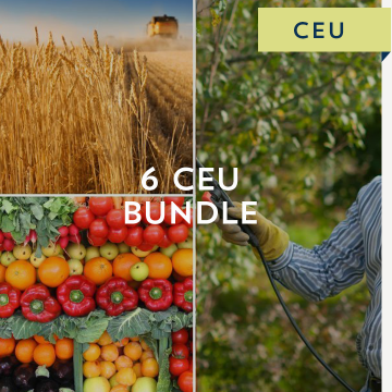 6 CEU Bundle