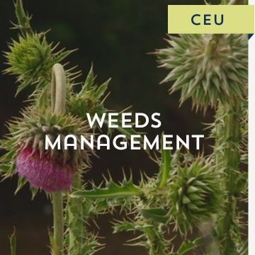 Weeds Management CEU