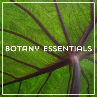 Botany Essentials