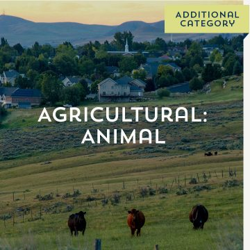 Agricultural: Animal - Additional Category