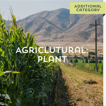 Agricultural: Plant - Additional Category