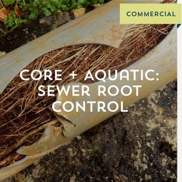Core + Aquatic: Sewer Root Control - Commercial