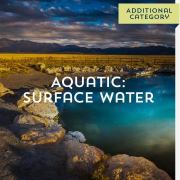 Aquatic: Surface Water - Additional Category