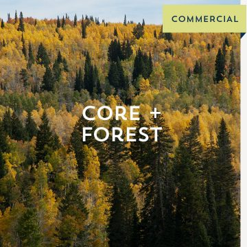 Core + Forest - Commercial
