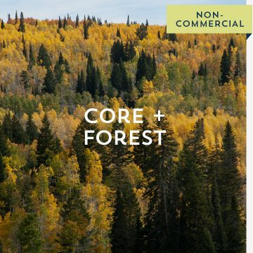 Core + Forest - Non-Commercial
