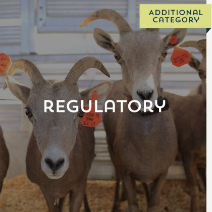 Regulatory - Additional Category