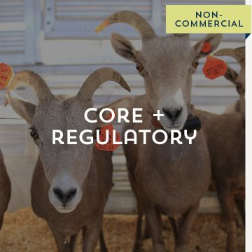 Core + Regulatory - Non-Commercial