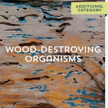 Wood Destroying Organisms - Additional Category