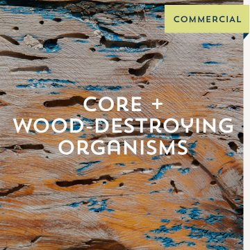Core + Wood Destroying Organisms - Commercial