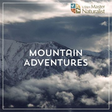 Utah Master Naturalist: Mountain Adventures
