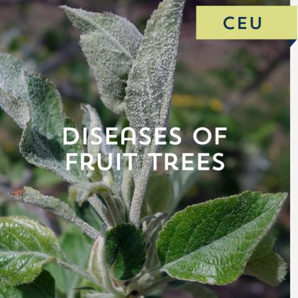 Diseases of Fruit Trees