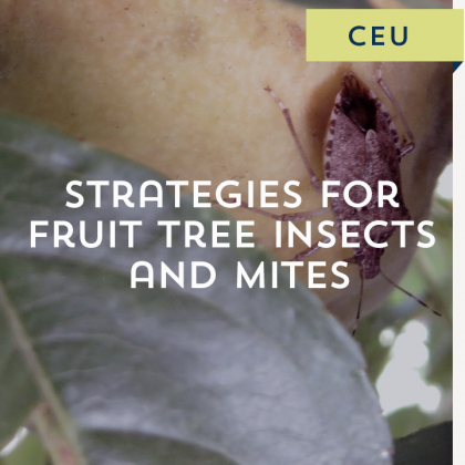 Strategies for Fruit Tree Insects and Mites