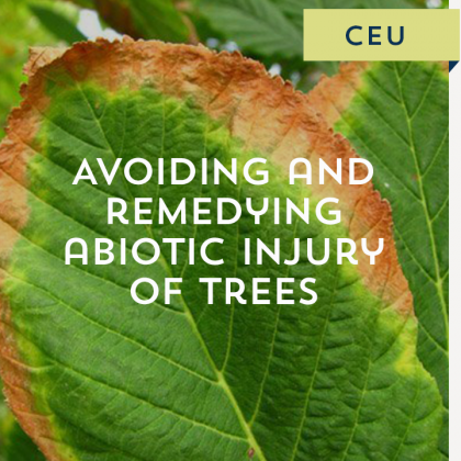 Avoiding and Remedying Abiotic Injury of Trees