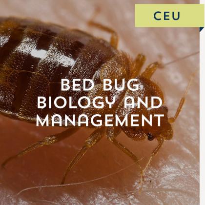 Bed Bug Biology and Management